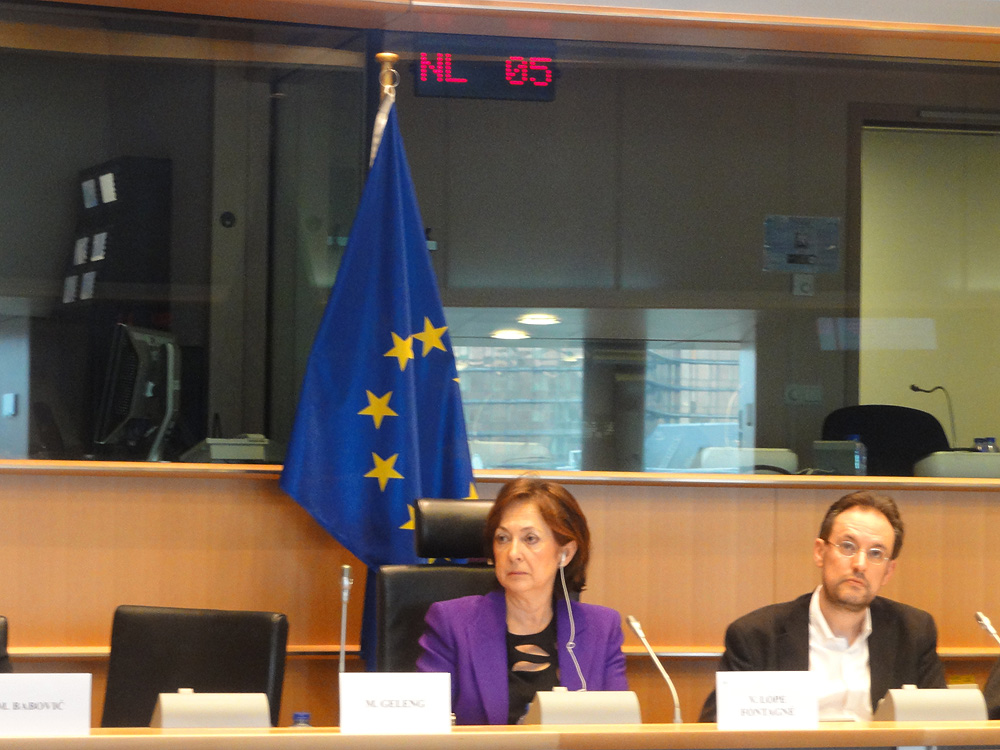 2016 03 03 social innovation debate V Lope Fontagne MEPhost A Saint Denis Moderator c Amana Ferro EAPN